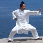 Οι οκτώ κινήσεις του θεραπευτικού Μπαντουαντζίν (vid)