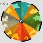 Κινέζικη Αστρολογία: Τα αντίπαλα ζευγάρια – β΄ μέρος