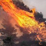 Σε πλήρη παράλυση, η Ελλάδα καίγεται για ακόμη μια χρονιά (vid)