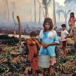 Η αποψίλωση των δασών στη Βραζιλία σχεδόν τετραπλασιάστηκε (vid)