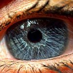 Ελπίδες σε τυφλούς δίνει τεχνητός αμφιβληστροειδής